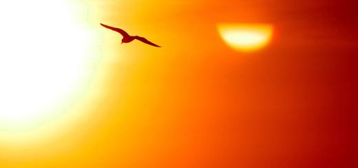 Uroda 40 plus - Promieniowanie UVA – szkodliwy wpływ słońca na skórę